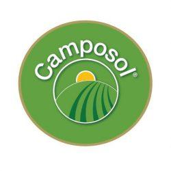Aandelen Camposol kopen